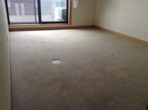 じゅうたん張りの床