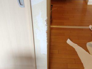 ペットが傷にした壁