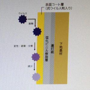 壁紙表面のウイルス減少